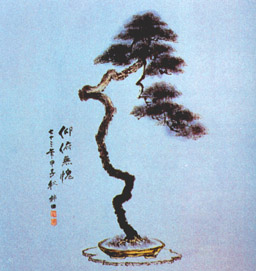 bonsai_pittura2