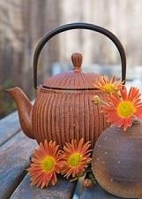 contest Biblioteca giapponese libri tè