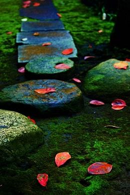 tanka autunno sentiero kokin waka shu