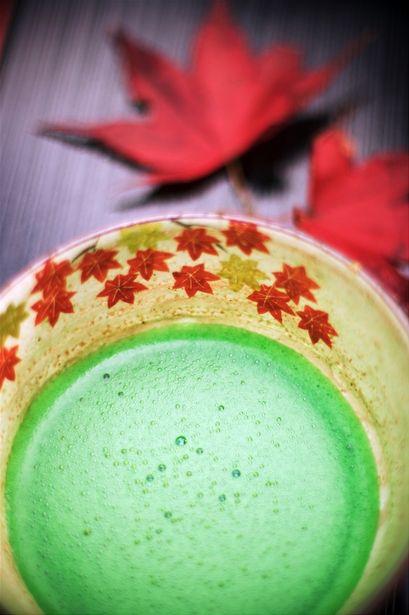 tè matcha cerimonia del tè cultura del tè tollini