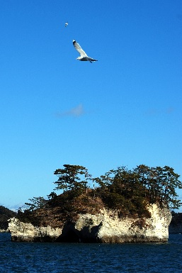 isole di matsushima © Patrick Colgan