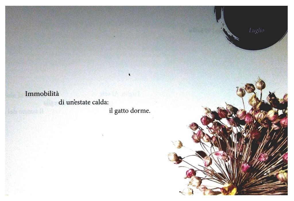 Un mese, un anno. 90 haiku di Alfredo Martini